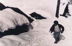 屋根の雪おろしをしないと家がつぶれてしまいます